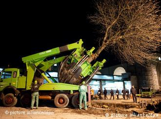 A tree is removed on Tuesday