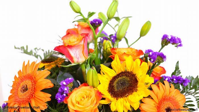 Цветы на собеседовании