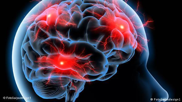 بخشهای مختلف مغز با یکدیگر در ارتباط هستند