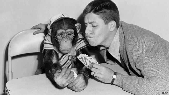 Flash-Galerie Komiker Jerry Lewis