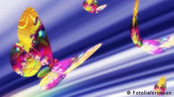 Symboldbild: Schmetterlinge