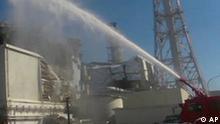 Japan Erdbeben Tsunami Nuklear Krise