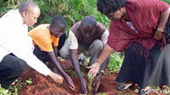 People planting trees in Uganda