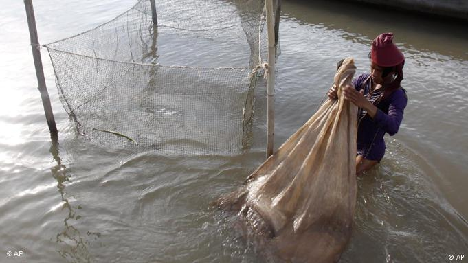 A Cambodian fisherman holds a bag loaded life fishes as his catches from the Mekong River at the out skirt of Phnom Penh, Cambodia, Tuesday, April 19, 2011. Laos has deferred decision on erecting in the first dam on the lower Mekong River in face of strong opposition from neighboring countries including its closest ally, Vietnam. (AP Photo/Heng Sinith)
