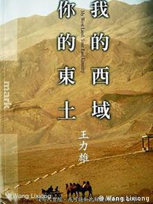 Buchcover My West Land, Your East Turkestan,