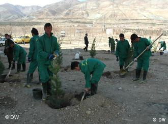 مهاجران افغان در ایران شاقه ترین کارها را انجام می دهند.