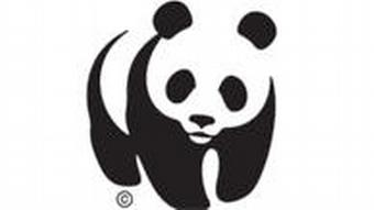 WWF Logo World Wide Fund for Nature
