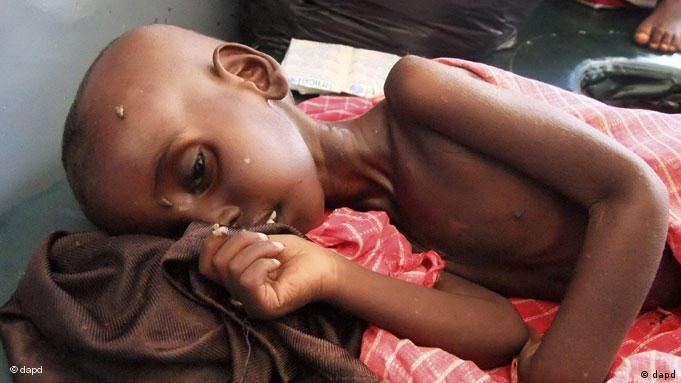 L'invasion des criquets pèlerins risque de causer la famine chez de millions de personnes en Afrique de l'est