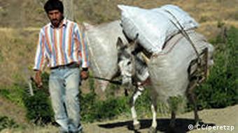Mann mit Esel (Foto: CC/peretzp)