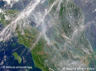 A satellite image of Malaysian forest fires