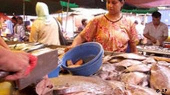 Fischmangel in Malaysia