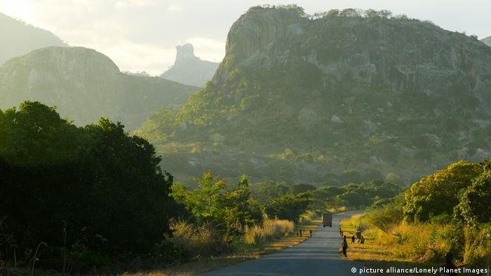 Symbolbild Wälder Mosambik