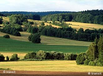 Czech fields