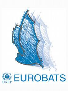 International Bat-Conservation in Europe Logo Fledermaus