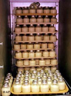 Muttermilch im Kühlschrank