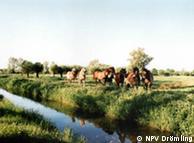 Природный парк Дрёмлинг