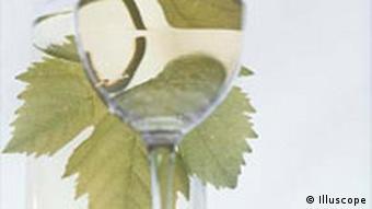 Wein Weinblatt und Glas