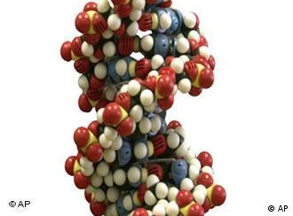 No futuro breve, qualquer um poderá mandar seqüenciar seu genoma por 10 mil euros