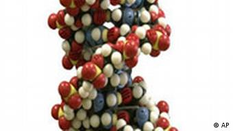 DNA molecule model, graphic element on white