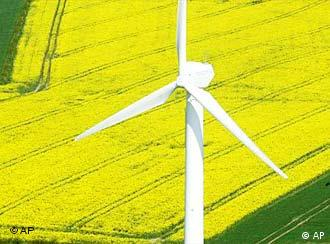 A wind mill near a rapeseed field near Germany's Baltic Sea coast
