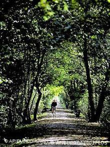 Fahrradfahrer am Niederrhein