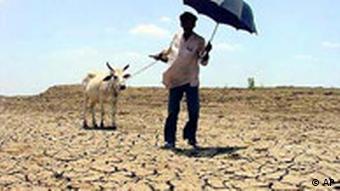 eine vollkommen ausgetrocknete Landschaft(AP Photo/Gaurav Tiwari)