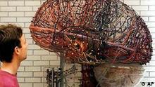 A giant model of a brain is shown at the exhibition Gen-Welten (gen world) at the museum in Mannheim, April 2, 1998. (AP Photo/Heribert Proepper)