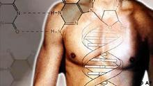 Symbolbild Stammzellenforschung Mensch DNA