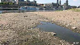 Trockenheit in Dresden, Elbe
