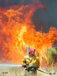 A fireman hoses down a fire near the village of El Tejado in the Sierra de Candelario, 180 kilometers west of Madrid, Spain Monday Aug. 4, 2003. Fire services are struggling to contain wildfires which have broken out in the region after a long hot and dry spell. (AP Photo/Denis Doyle)