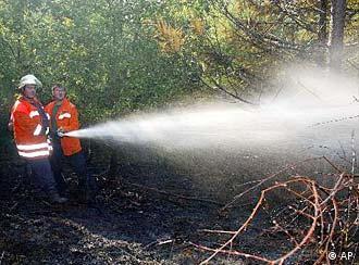 Лесные пожары в ФРГ нередко тушат добровольцы