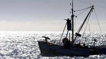 Isländisches Boot beim Walfang, Quelle: AP