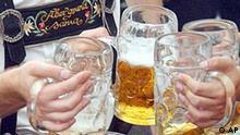 Besucher des Münchener Oktoberfestes stossen mit Maßkrügen an, Bier