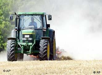 Observers expect GM crops to gain ground in Germany